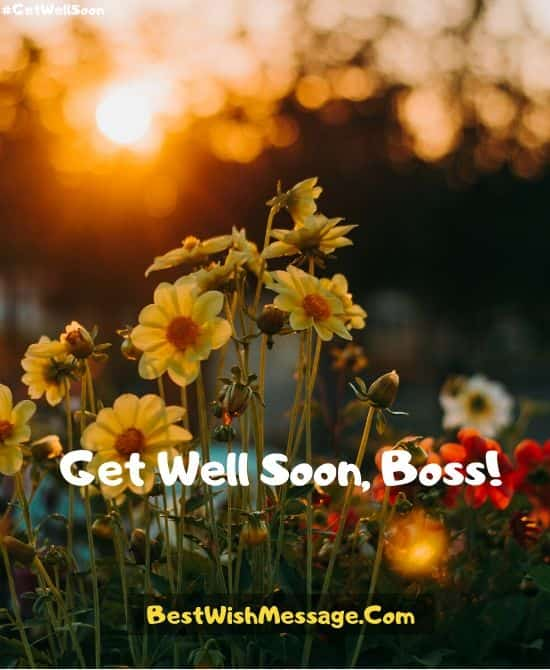 Professional Get Well Soon Messages for Boss