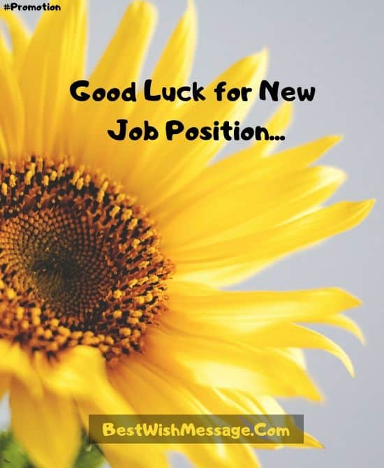 Congratulations on Promotion to New Position for Friends
