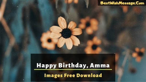 Happy Birthday Amma Images