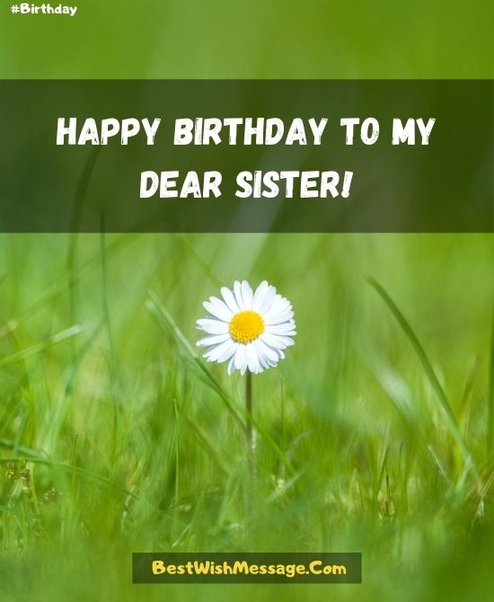 Happy Birthday to the Best Sister