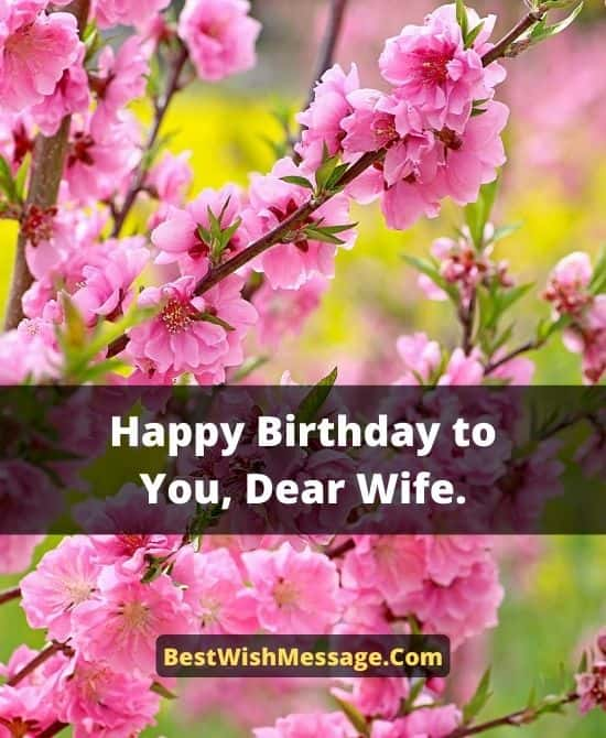 Romantic Birthday Messages for Your Wife