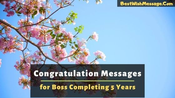 Congratulations Messages to Boss for Completing 5 Years