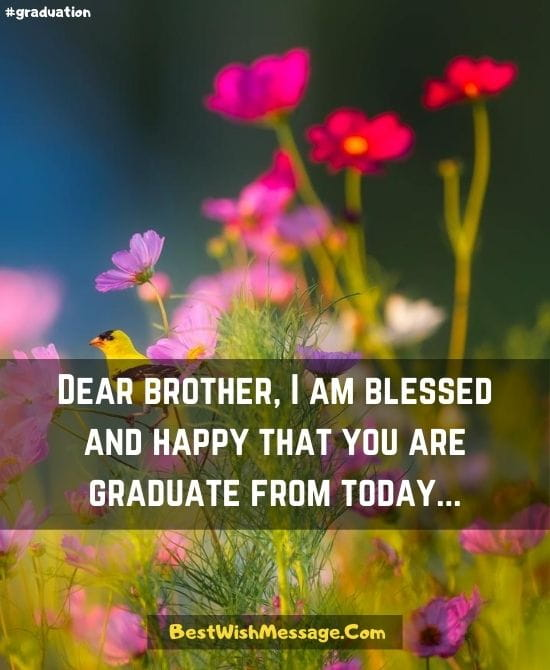 Congratulations Messages to Brother