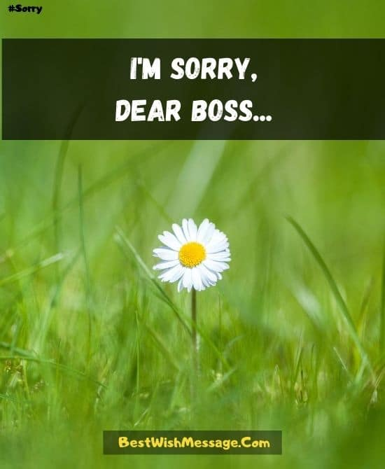 Professional Sorry Messages for Boss