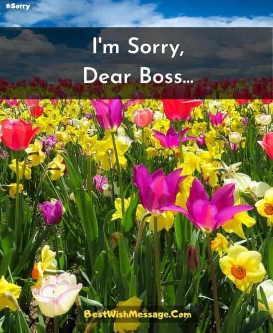 Apology Text Messages for Boss
