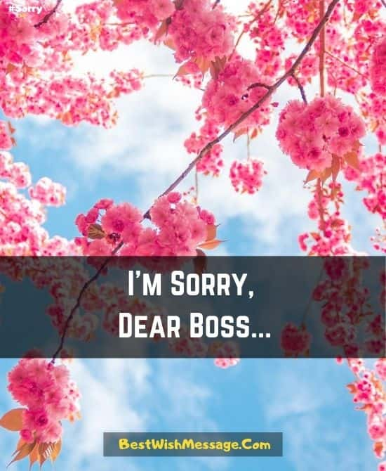 Apology SMS to Boss for Misbehavior