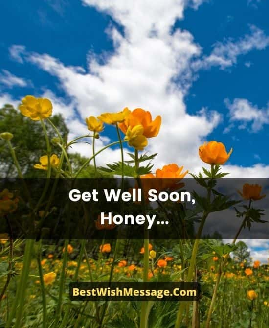 Quick Recovery Wishes for Lover