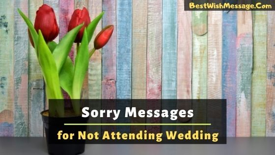 Sorry Messages for Not Attending Wedding