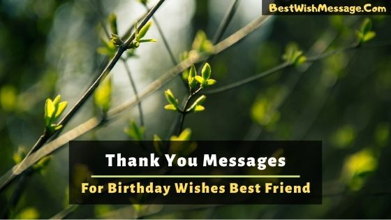 Thank You Message for Birthday Wishes to Your Best Friend