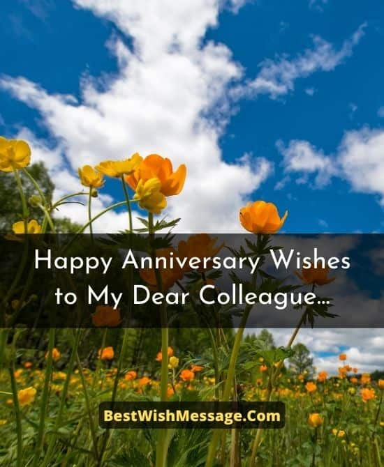 Work Anniversary Wishes to Colleagues