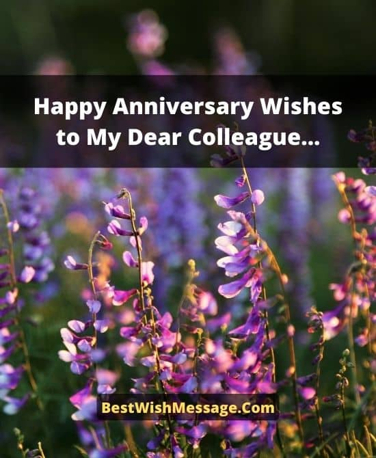 5 Years Work Anniversary Wishes to Colleagues