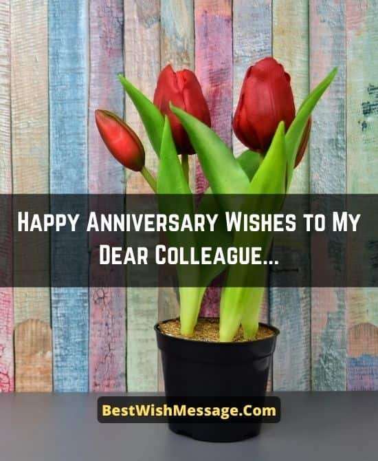 Work Anniversary Congratulation Messages