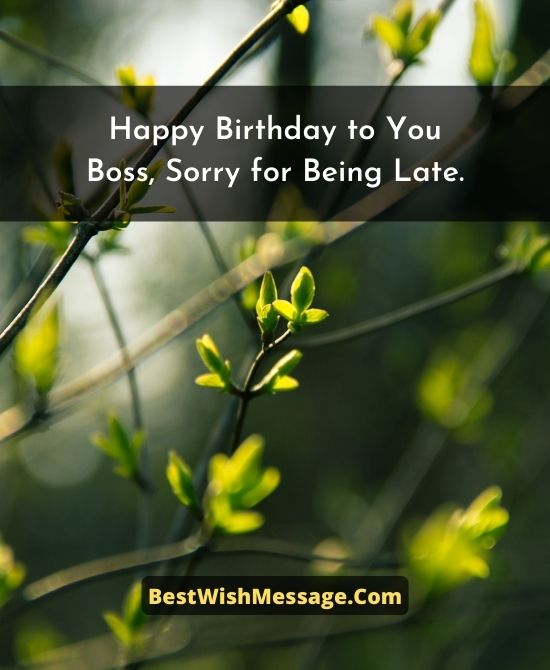 Belated Birthday Wishes to Boss
