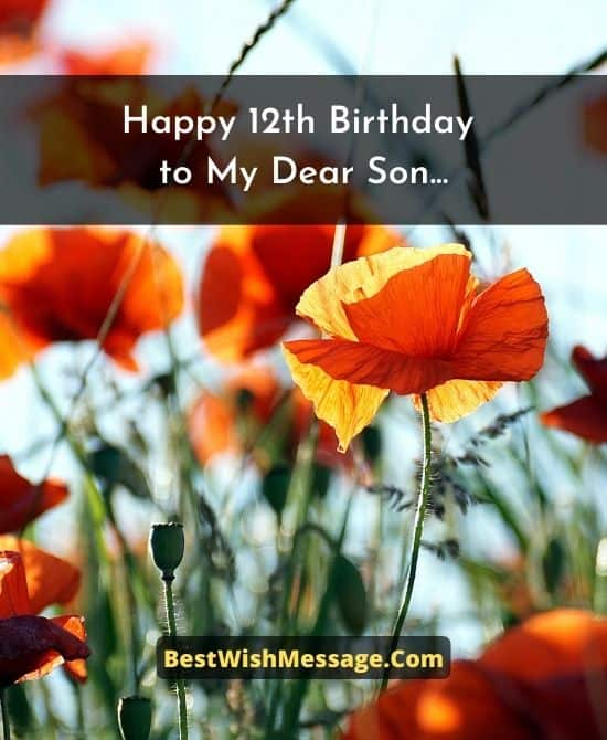 Birthday Wishes for Son Turning 12