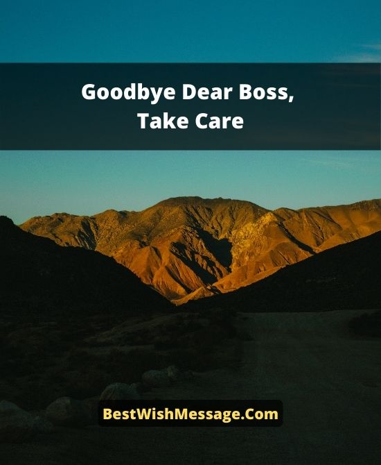 Farewell Wishes To Boss When Leaving
